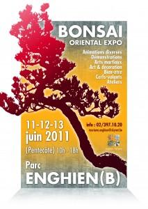 enghien 11-12-13 juin 2011 Aff-bonsai-mail-F-213x300